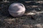 urna-nix-detalle2